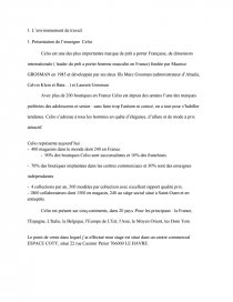 Rapport De Stage Bac Pro Commerce Celio Dissertations