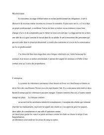 Stage D Observation Clinique Veterinaire Rapport De Stage