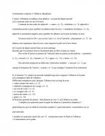 Commentaire Composé Du Poème Lalbatros De Baudelaire Note