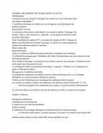 Exemple Rapport D Activite Bac Pro Eleec Memoire Adoeak