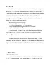 Rapport De Stage Educateur Specialise Imp Compte Rendu Dissertation