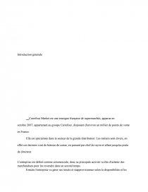 Remerciement Introduction Stage Carrefour Note De