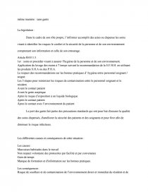 Analyse De Situation D Hygiene Compte Rendu Marionlbrl