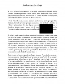 dissertation le rapport de brodeck