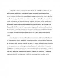 information on the internet essay www.internet