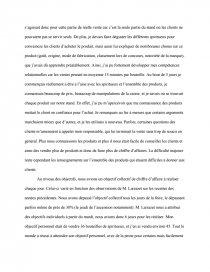 Rapport Stage Foire Comptoirs De Magellan Rapport De Stage