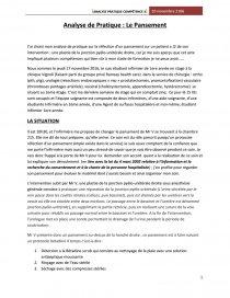 Analyse De Pratique Le Pansement Analyse Sectorielle Bubax
