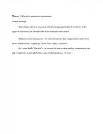 Rapport De Stage De 3eme En Esthetique Rapport De Stage Manon Cagnet