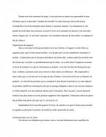 Rapport De Stage Bricoman Rapport De Stage Bastoudoudou