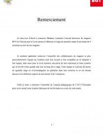 Rapport Stage But Rapport De Stage David Hoarau