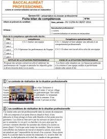 Fiches Bilan Compétences Pôle Dissertation Zwoldix - Fiche bilan de competences bac pro cuisine