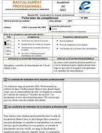 Fiche Bilan Pole E Rapport De Stage Andreadadou - Fiche bilan de competences bac pro cuisine