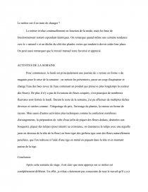Rapport De Stage Fleuriste Rapport De Stage Charmonie