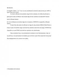E13 Bac Assp En Structure Readction Complete Rapport De Stage