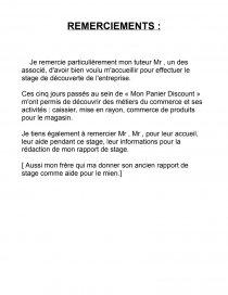 Rapport De Stage Mon Panier Discount Rapport De Stage
