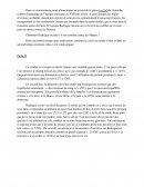 Dissertation cid