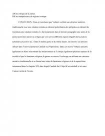 dissertation zadig chapitre 3