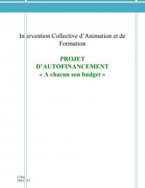 Icaf Rapport De Stage Coline Grellet
