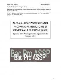 Bac Pro Assp Option Domicile Etude De Cas Neko Touka