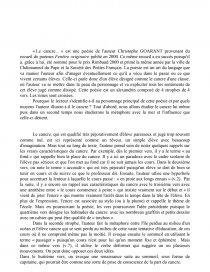 Commentaire Goarant Commentaire De Texte Amandine Fresneda